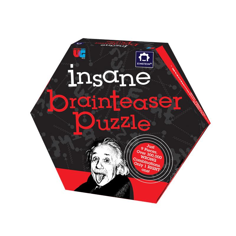 Einstein Insane Brainteaser Puzzle